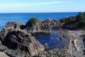 柱状節理の岩肌岩礁